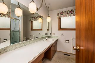 Photo 17: 3807 112A Street in Edmonton: Zone 16 House for sale : MLS®# E4179929