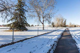 Photo 38: 3807 112A Street in Edmonton: Zone 16 House for sale : MLS®# E4179929