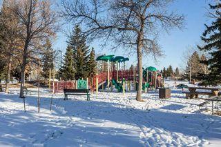 Photo 41: 3807 112A Street in Edmonton: Zone 16 House for sale : MLS®# E4179929