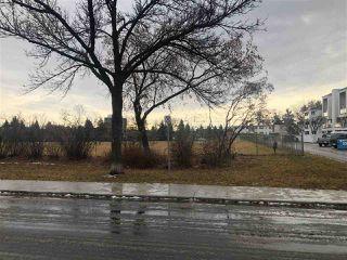 Photo 6: 11638 74 Avenue in Edmonton: Zone 15 Vacant Lot for sale : MLS®# E4182040