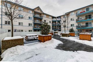 Photo 38: 303 10403 98 Avenue in Edmonton: Zone 12 Condo for sale : MLS®# E4187324