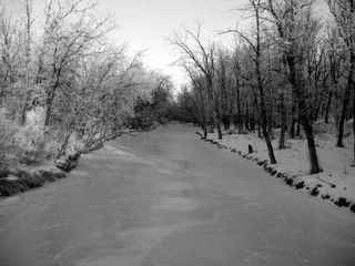 Photo 8: 230 CREEK BEND Road in WINNIPEG: Windsor Park / Southdale / Island Lakes Single Family Detached for sale (South East Winnipeg)  : MLS®# 2517873