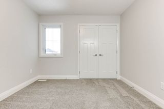 Photo 25: 8441 CUSHING Court SW in Edmonton: Zone 55 House for sale : MLS®# E4183229