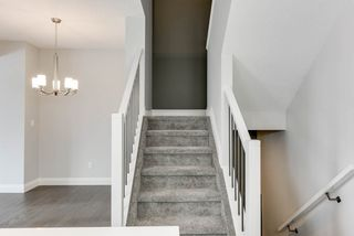 Photo 13: 8441 CUSHING Court SW in Edmonton: Zone 55 House for sale : MLS®# E4183229