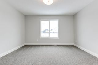 Photo 26: 8441 CUSHING Court SW in Edmonton: Zone 55 House for sale : MLS®# E4183229