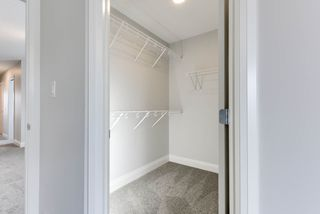 Photo 28: 8441 CUSHING Court SW in Edmonton: Zone 55 House for sale : MLS®# E4183229
