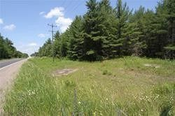 Photo 2: 5238 County Rd 121 Road in Minden Hills: Property for sale : MLS®# X4678347