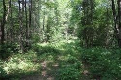 Photo 7: 5238 County Rd 121 Road in Minden Hills: Property for sale : MLS®# X4678347