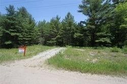 Photo 11: 5238 County Rd 121 Road in Minden Hills: Property for sale : MLS®# X4678347