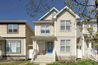 Photo 38: 262 PRESTWICK Circle SE in Calgary: McKenzie Towne Detached for sale : MLS®# A1035041