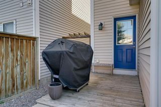 Photo 37: 262 PRESTWICK Circle SE in Calgary: McKenzie Towne Detached for sale : MLS®# A1035041