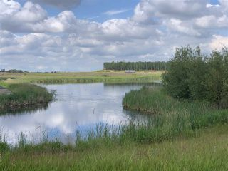 Photo 4: 301 52320 Range Road 231: Rural Strathcona County Rural Land/Vacant Lot for sale : MLS®# E4207424