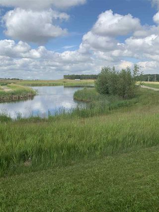 Photo 3: 301 52320 Range Road 231: Rural Strathcona County Rural Land/Vacant Lot for sale : MLS®# E4207424