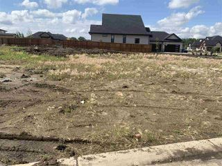 Photo 8: 301 52320 Range Road 231: Rural Strathcona County Rural Land/Vacant Lot for sale : MLS®# E4207424