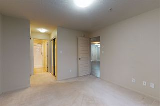 Photo 19: 310 7909 71 Street in Edmonton: Zone 17 Condo for sale : MLS®# E4219234