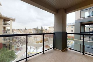 Photo 25: 310 7909 71 Street in Edmonton: Zone 17 Condo for sale : MLS®# E4219234