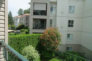 Photo 22: 202 3172 GLADWIN Road in Abbotsford: Central Abbotsford Condo for sale : MLS®# R2514596