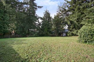 Photo 11: 2602 CAMPBELL Avenue in Abbotsford: Central Abbotsford House for sale : MLS®# R2524225