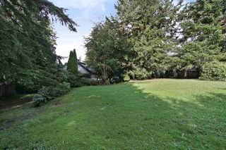 Photo 12: 2602 CAMPBELL Avenue in Abbotsford: Central Abbotsford House for sale : MLS®# R2524225