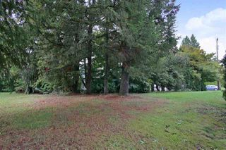 Photo 15: 2602 CAMPBELL Avenue in Abbotsford: Central Abbotsford House for sale : MLS®# R2524225