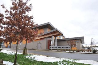 """Photo 20: 65 8570 204 Street in Langley: Willoughby Heights Townhouse for sale in """"WOODLAND PARK"""" : MLS®# R2430294"""