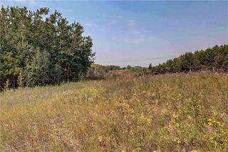 Photo 7: 18 BEARSPAW VALLEY Place in Rural Rocky View County: Rural Rocky View MD Land for sale : MLS®# C4291576