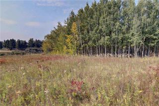 Photo 5: 18 BEARSPAW VALLEY Place in Rural Rocky View County: Rural Rocky View MD Land for sale : MLS®# C4291576