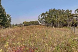 Photo 6: 18 BEARSPAW VALLEY Place in Rural Rocky View County: Rural Rocky View MD Land for sale : MLS®# C4291576