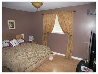 Photo 9: 13101 PAULS Road in ARNAUD: Manitoba Other Residential for sale : MLS®# 2915788