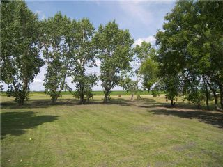 Photo 20: 13101 PAULS Road in ARNAUD: Manitoba Other Residential for sale : MLS®# 2915788