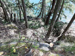 Photo 14: LOT 21 Halibut Hill Rd in MUDGE ISLAND: Isl Mudge Island Land for sale (Islands)  : MLS®# 842422