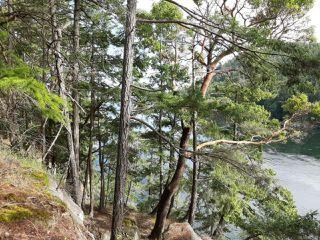 Photo 7: LOT 21 Halibut Hill Rd in MUDGE ISLAND: Isl Mudge Island Land for sale (Islands)  : MLS®# 842422