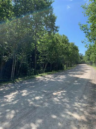 Photo 3: Lot 12 Otter Point Road in East Chester: 405-Lunenburg County Vacant Land for sale (South Shore)  : MLS®# 202013353