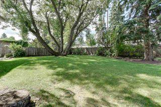 Photo 4: 14204 75 AVENUE in Edmonton: Zone 10 House for sale : MLS®# E4210155