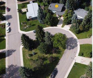 Photo 43: 14204 75 AVENUE in Edmonton: Zone 10 House for sale : MLS®# E4210155