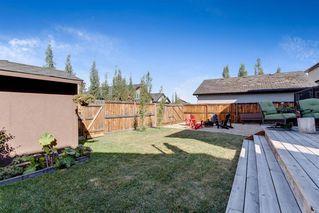 Photo 37: 335 Willow Ridge Manor SW: Black Diamond Detached for sale : MLS®# A1026892