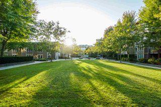 Photo 14: 130 15918 26 Avenue in Surrey: Grandview Surrey Condo for sale (South Surrey White Rock)  : MLS®# R2406791