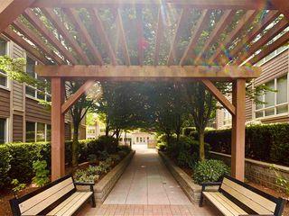 """Photo 25: 204 15988 26 Avenue in Surrey: Grandview Surrey Condo for sale in """"The Morgan"""" (South Surrey White Rock)  : MLS®# R2454946"""