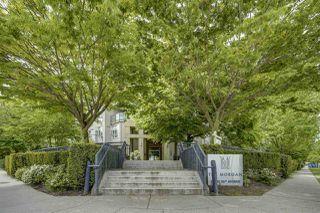 """Photo 19: 204 15988 26 Avenue in Surrey: Grandview Surrey Condo for sale in """"The Morgan"""" (South Surrey White Rock)  : MLS®# R2454946"""