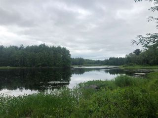 Photo 3: Lot Medway River Road in Riversdale: 406-Queens County Vacant Land for sale (South Shore)  : MLS®# 202013217