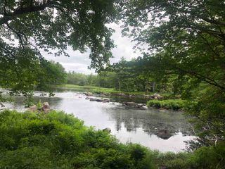 Photo 2: Lot Medway River Road in Riversdale: 406-Queens County Vacant Land for sale (South Shore)  : MLS®# 202013217