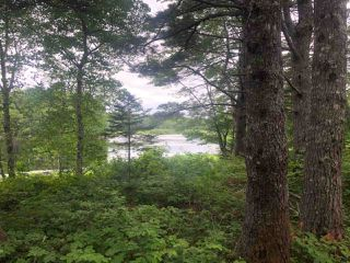 Photo 5: Lot Medway River Road in Riversdale: 406-Queens County Vacant Land for sale (South Shore)  : MLS®# 202013217