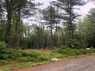 Photo 1: Lot Medway River Road in Riverdale: 406-Queens County Vacant Land for sale (South Shore)  : MLS®# 202013217