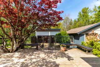 Photo 5: 6471 267 Street in Langley: County Line Glen Valley House for sale : MLS®# R2504217
