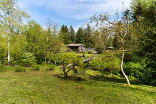 Photo 3: 6471 267 Street in Langley: County Line Glen Valley House for sale : MLS®# R2504217
