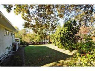 Photo 11: 1420 Simon Rd in VICTORIA: SE Mt Doug Single Family Detached for sale (Saanich East)  : MLS®# 486459