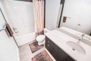 Photo 25:  in Edmonton: Zone 15 Condo for sale : MLS®# E4204636