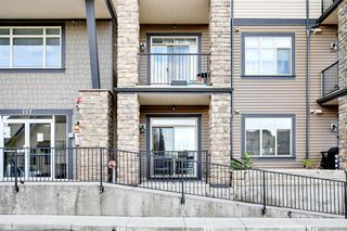 Main Photo: 121 117 Copperpond Common SE in Calgary: Copperfield Apartment for sale : MLS®# A1042803