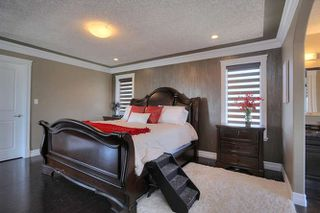 Photo 17: 1254 Adamson Drive in Edmonton: Zone 55 House for sale : MLS®# E4168962