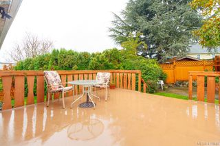 Photo 16: 3260 Cedar Hill Road in VICTORIA: SE Cedar Hill Single Family Detached for sale (Saanich East)  : MLS®# 416849